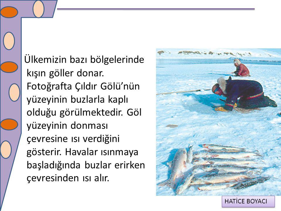 Ülkemizin bazı bölgelerinde kışın göller donar