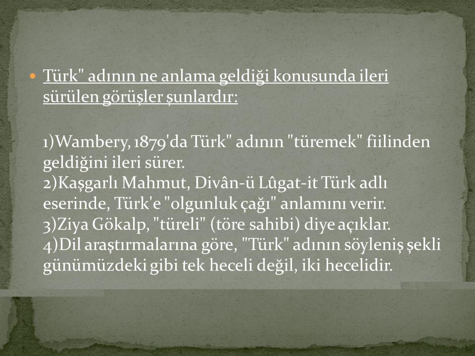 Türk adının ne anlama geldiği konusunda ileri sürülen görüşler şunlardır: