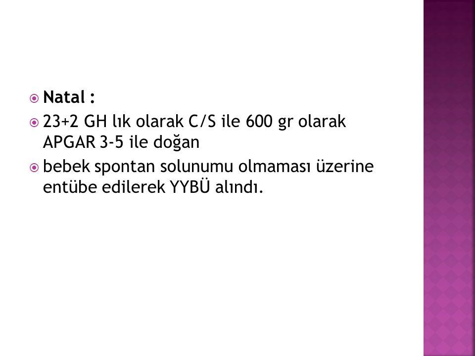 Natal : 23+2 GH lık olarak C/S ile 600 gr olarak APGAR 3-5 ile doğan.