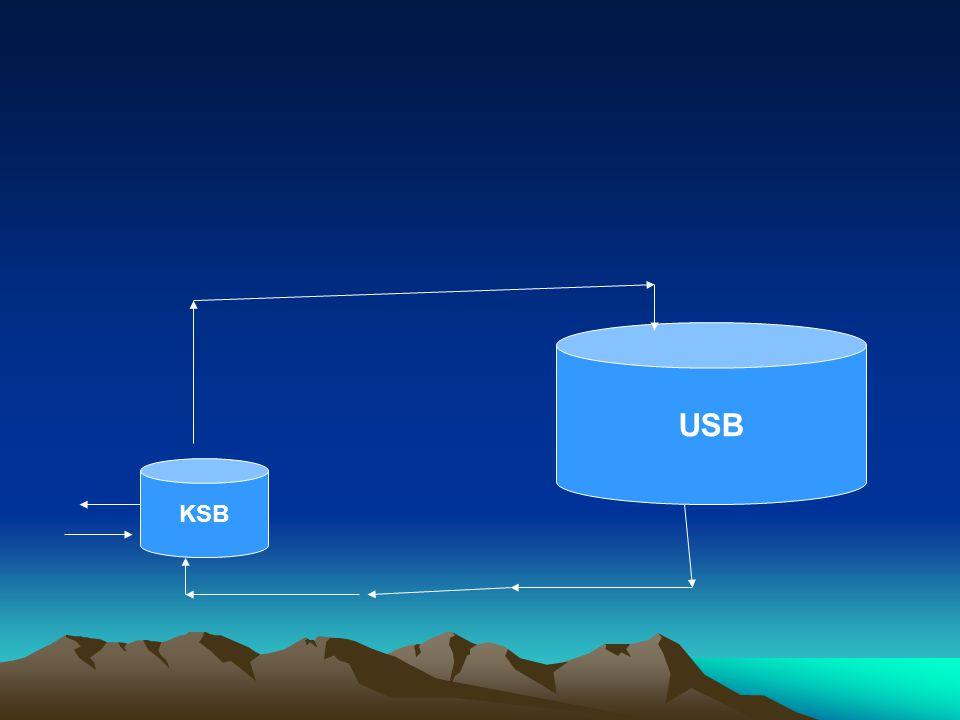 USB KSB