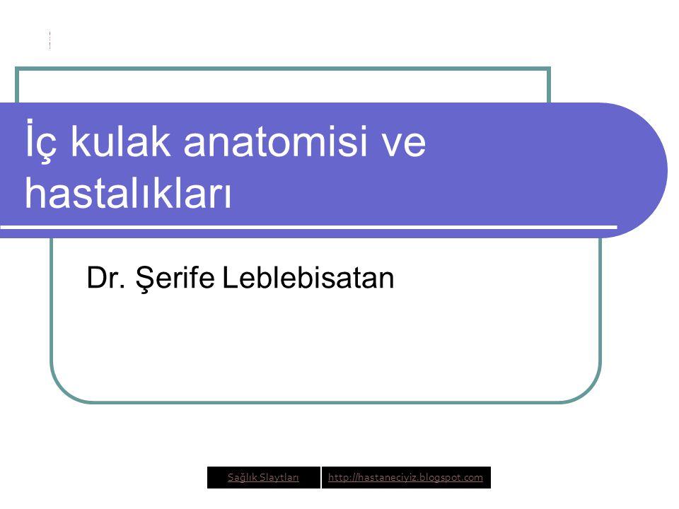 İç kulak anatomisi ve hastalıkları