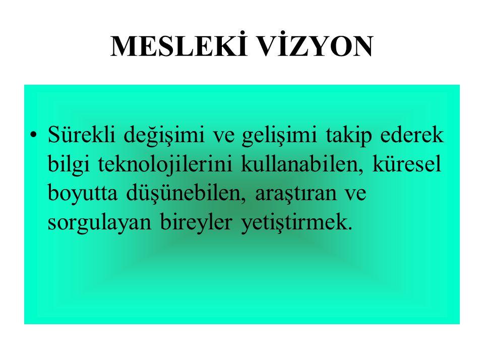 MESLEKİ VİZYON