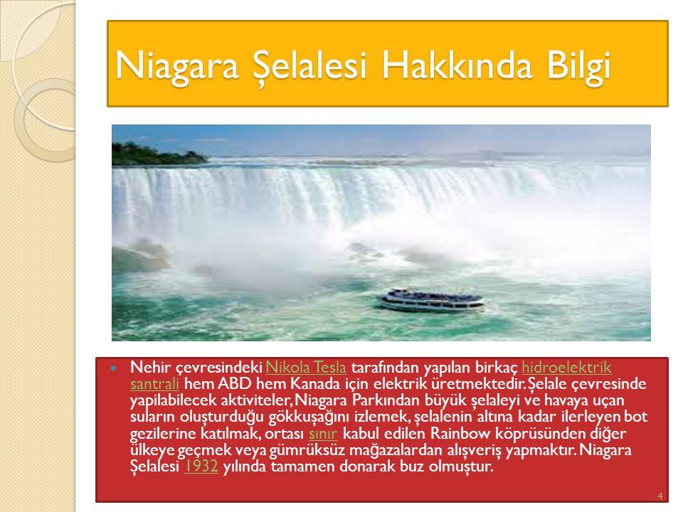 Niagara Şelalesi Hakkında Bilgi