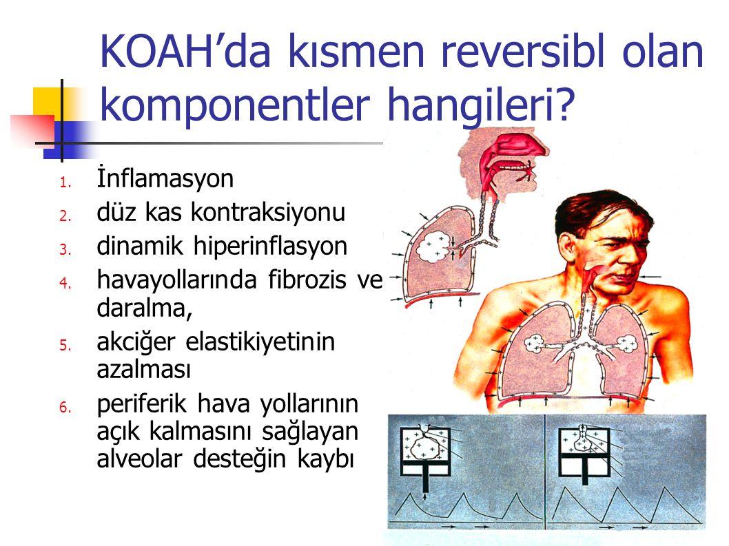KOAH'da kısmen reversibl olan komponentler hangileri