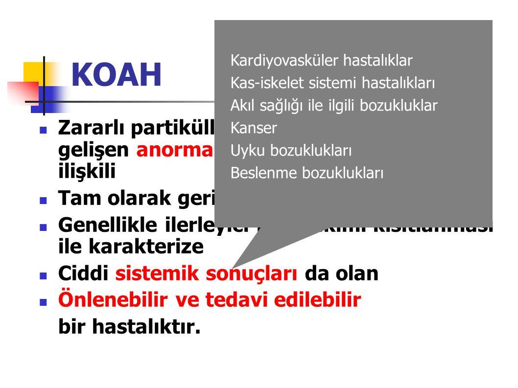 KOAH Kardiyovasküler hastalıklar. Kas-iskelet sistemi hastalıkları. Akıl sağlığı ile ilgili bozukluklar.