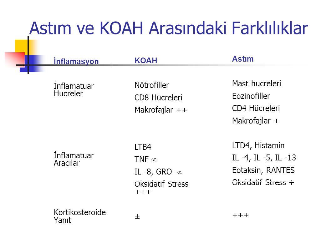 Astım ve KOAH Arasındaki Farklılıklar