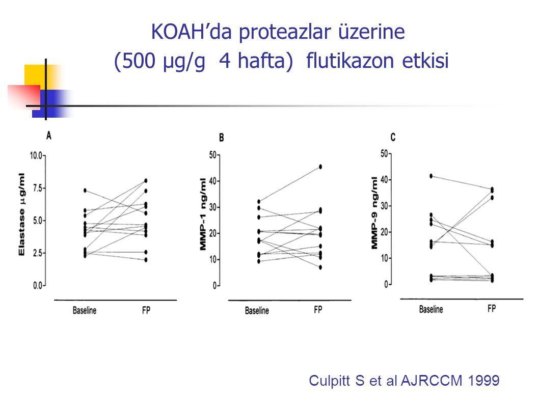 KOAH'da proteazlar üzerine (500 µg/g 4 hafta) flutikazon etkisi