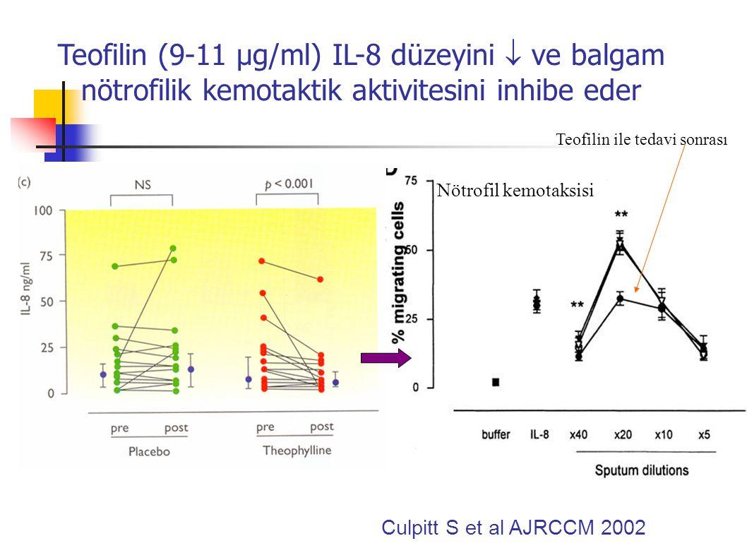 Teofilin (9-11 µg/ml) IL-8 düzeyini  ve balgam nötrofilik kemotaktik aktivitesini inhibe eder