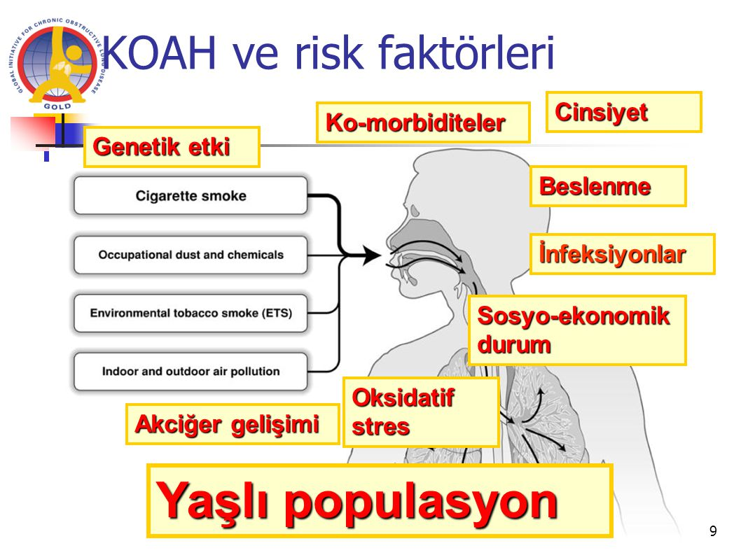 KOAH ve risk faktörleri