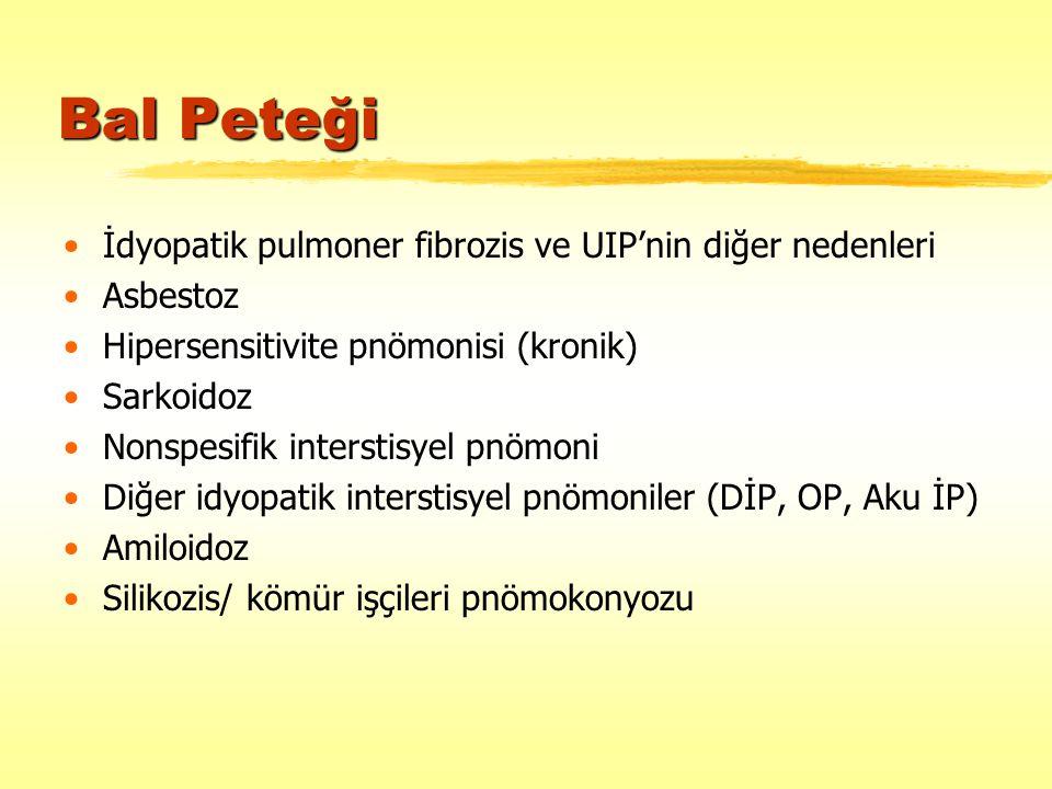Bal Peteği İdyopatik pulmoner fibrozis ve UIP'nin diğer nedenleri