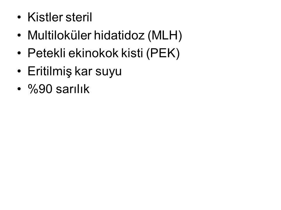 Kistler steril Multiloküler hidatidoz (MLH) Petekli ekinokok kisti (PEK) Eritilmiş kar suyu.