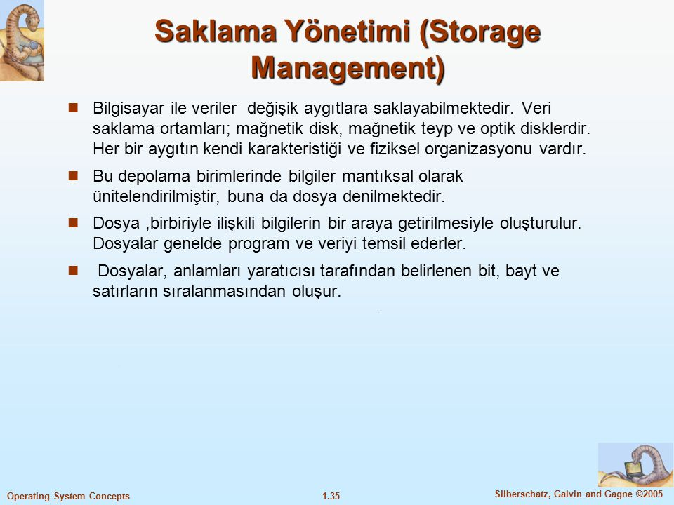 Saklama Yönetimi (Storage Management)