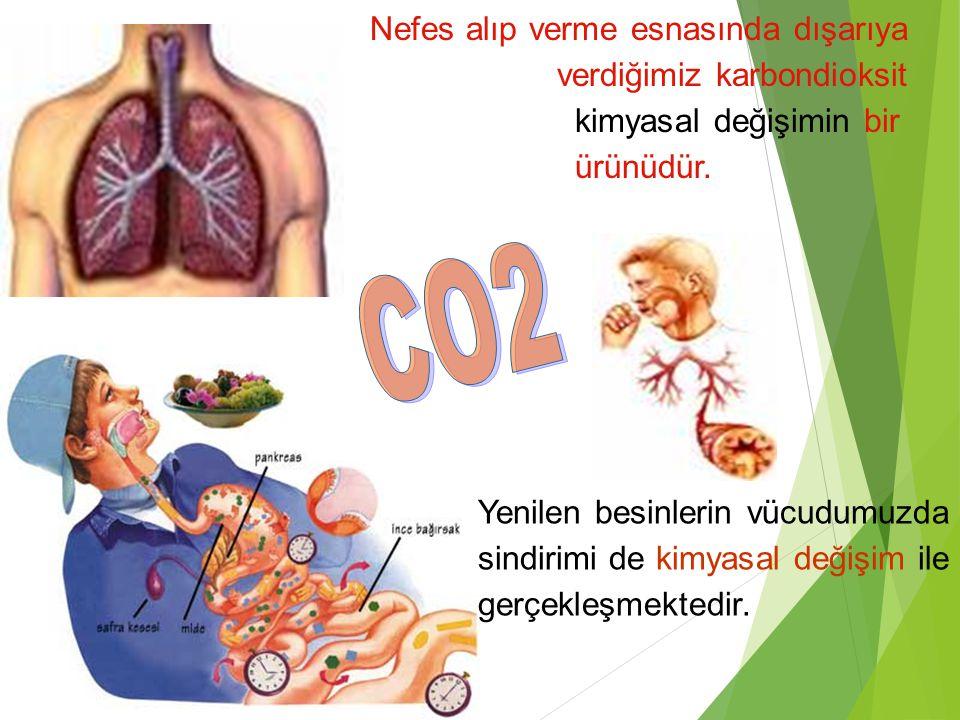 CO2 Nefes alıp verme esnasında dışarıya verdiğimiz karbondioksit