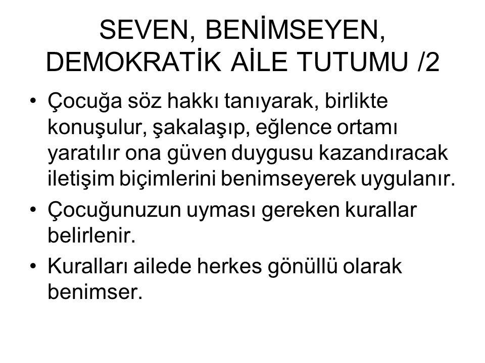 SEVEN, BENİMSEYEN, DEMOKRATİK AİLE TUTUMU /2