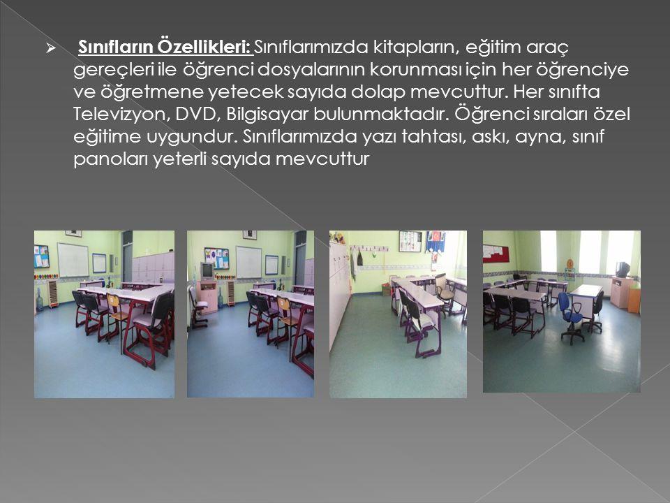 Sınıfların Özellikleri: Sınıflarımızda kitapların, eğitim araç gereçleri ile öğrenci dosyalarının korunması için her öğrenciye ve öğretmene yetecek sayıda dolap mevcuttur.