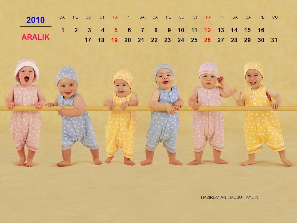 2010 ÇA. PE. CU. CT. PA. PT. SA. ARALIK. 1. 2. 3. 4. 5. 6. 7. 8. 9. 10. 11. 12. 13.