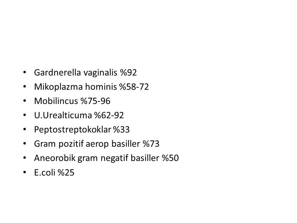 Gardnerella vaginalis %92