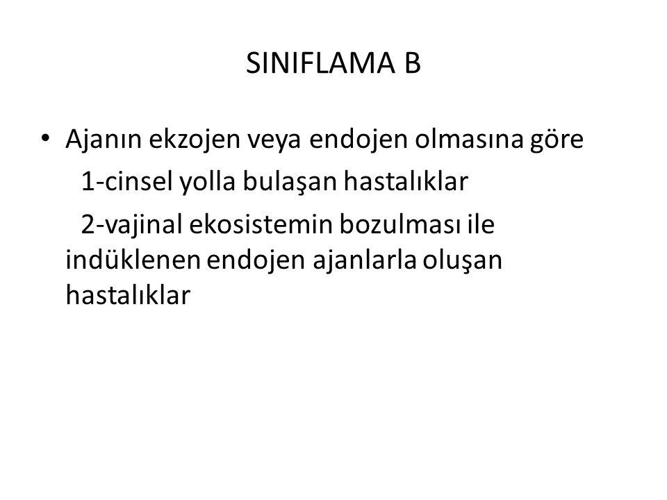 SINIFLAMA B Ajanın ekzojen veya endojen olmasına göre