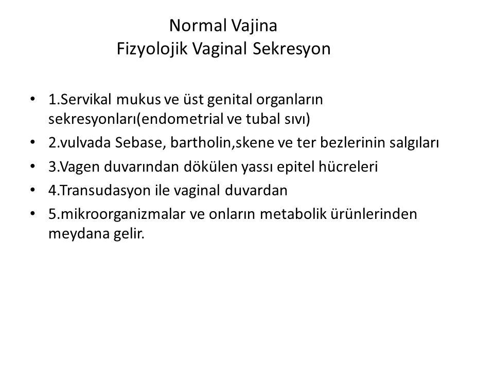 Normal Vajina Fizyolojik Vaginal Sekresyon