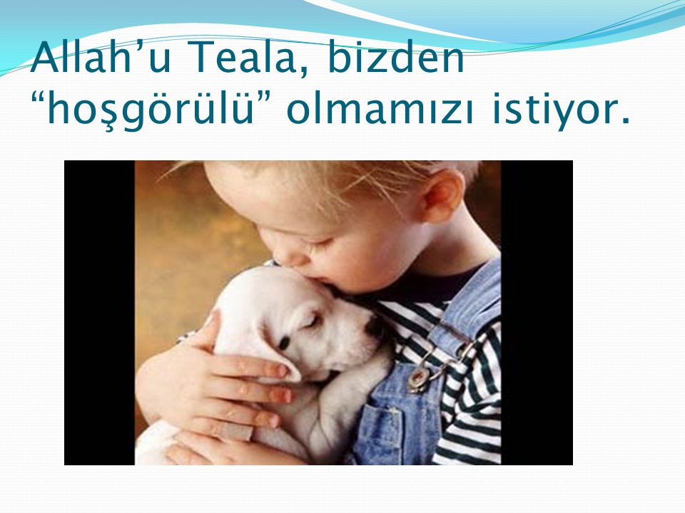 Allah'u Teala, bizden hoşgörülü olmamızı istiyor.