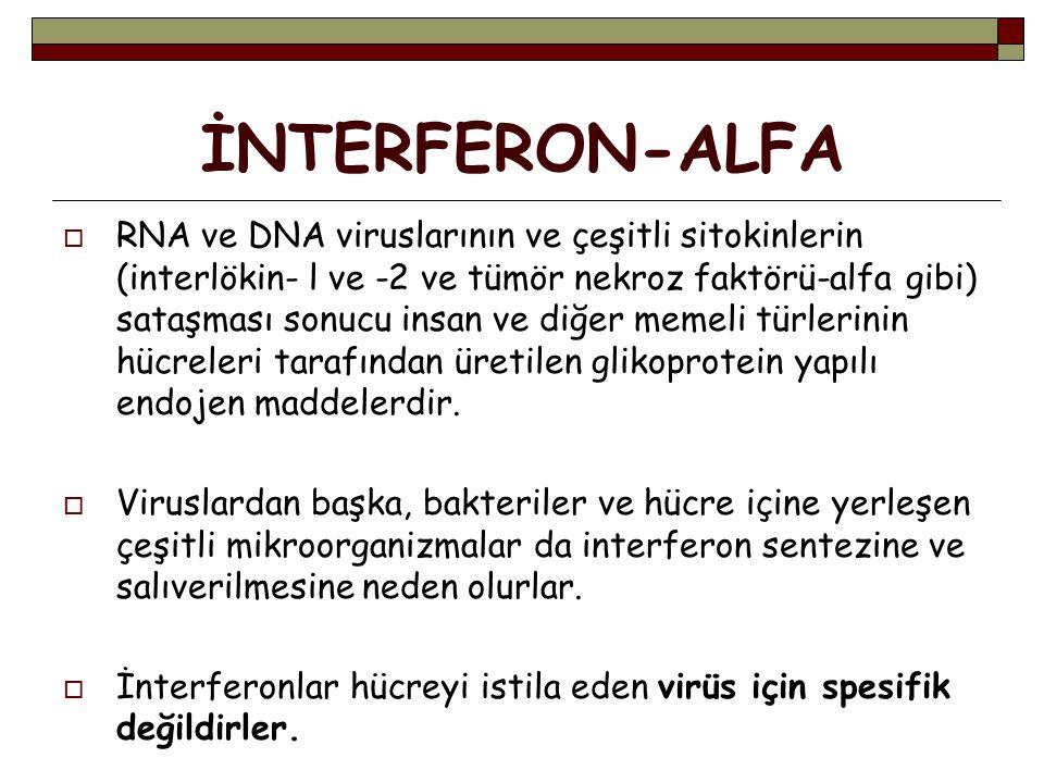 İNTERFERON-ALFA