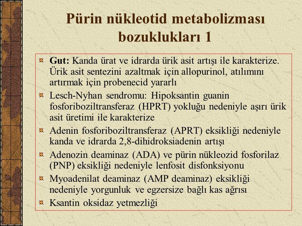 Pürin nükleotid metabolizması bozuklukları 1