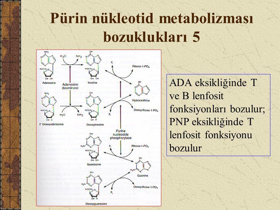 Pürin nükleotid metabolizması bozuklukları 5