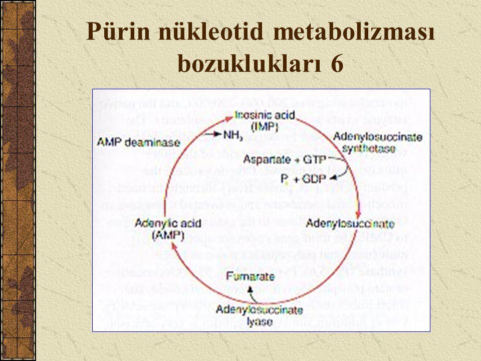 Pürin nükleotid metabolizması bozuklukları 6