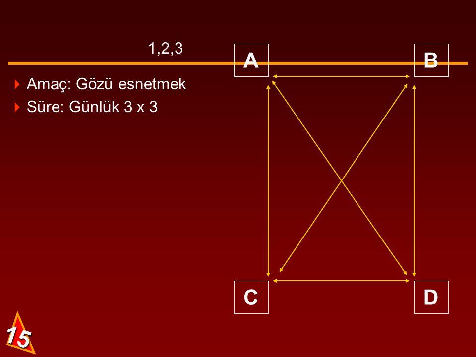 1,2,3 A B C D Amaç: Gözü esnetmek Süre: Günlük 3 x 3 15