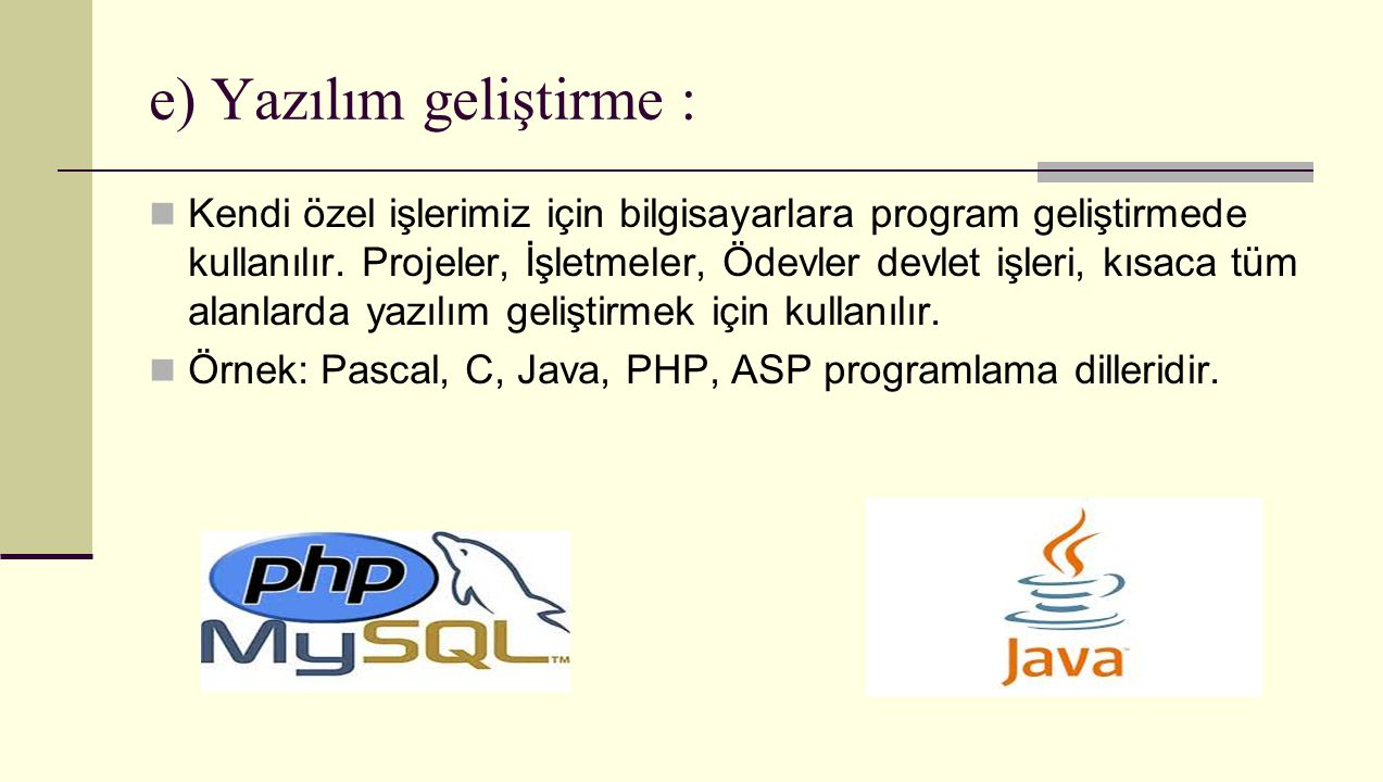 e) Yazılım geliştirme :