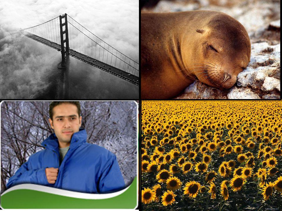 Biraz sonra gelecek resimlere bakarak iklimin etkilerini söyleyin.