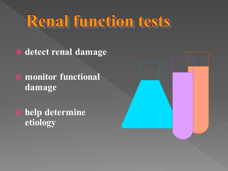 Renal function tests detect renal damage monitor functional damage