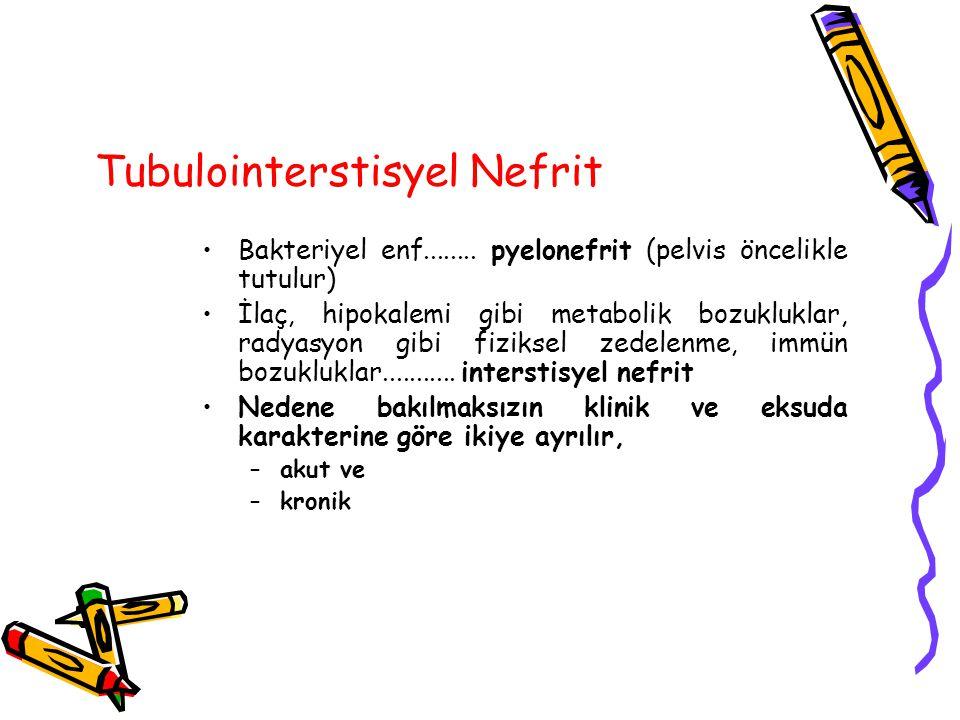 Tubulointerstisyel Nefrit
