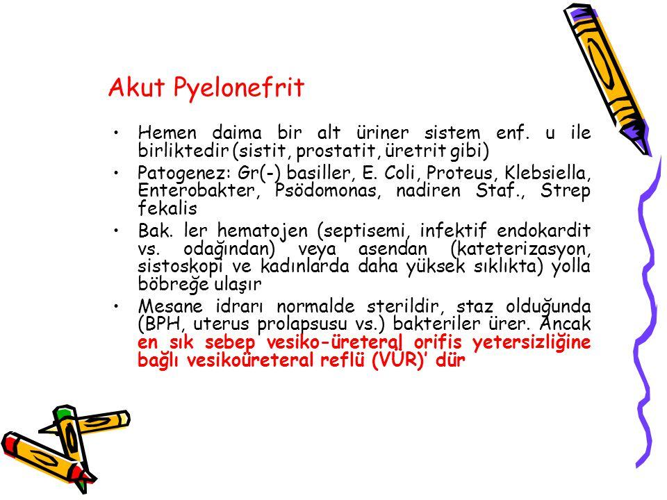 Akut Pyelonefrit Hemen daima bir alt üriner sistem enf. u ile birliktedir (sistit, prostatit, üretrit gibi)