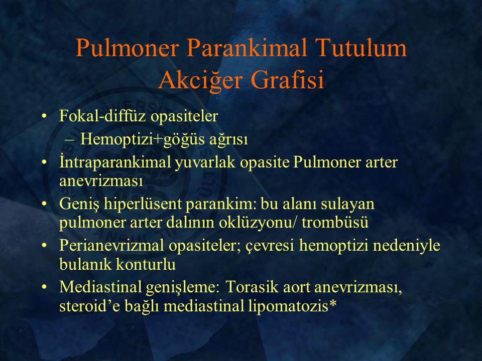Pulmoner Parankimal Tutulum Akciğer Grafisi
