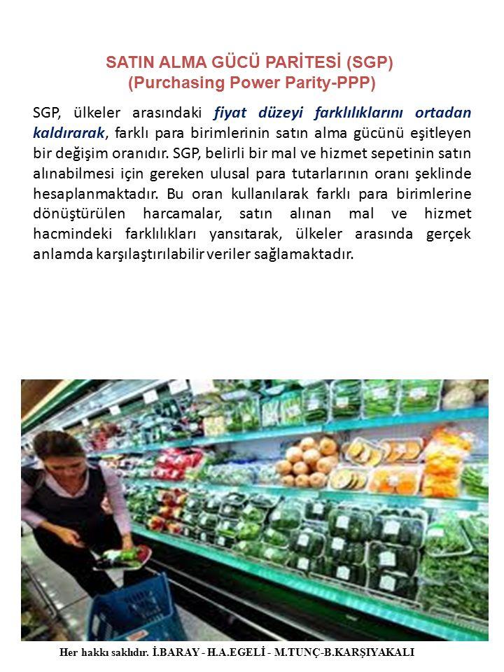 SATIN ALMA GÜCÜ PARİTESİ (SGP) (Purchasing Power Parity-PPP)