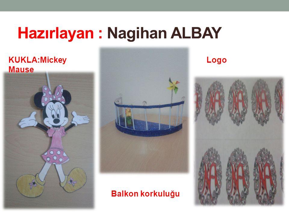 Hazırlayan : Nagihan ALBAY
