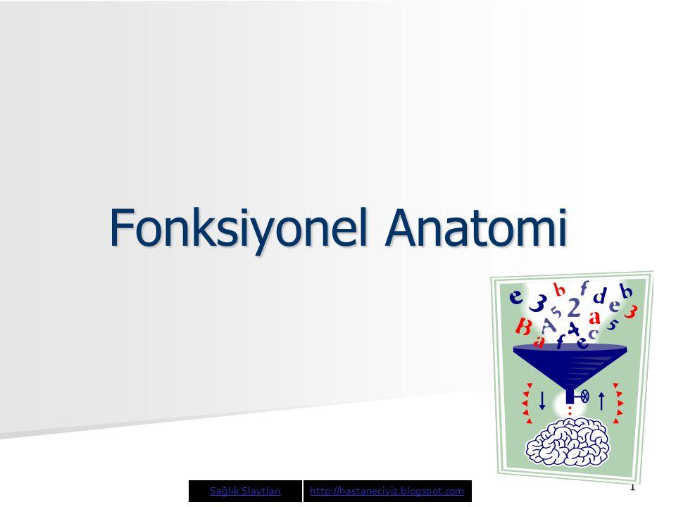 Fonksiyonel Anatomi Sağlık Slaytları http://hastaneciyiz.blogspot.com
