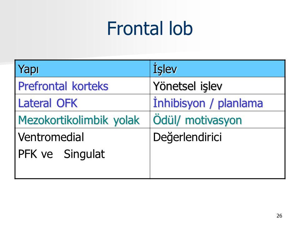 Frontal lob Yapı İşlev Prefrontal korteks Yönetsel işlev Lateral OFK