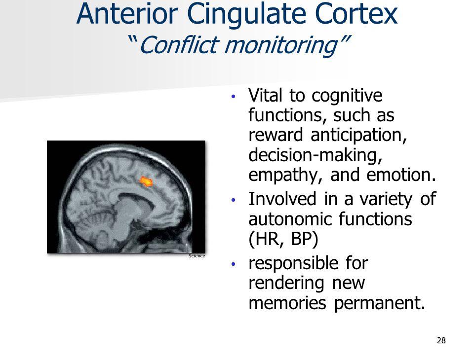 Anterior Cingulate Cortex Conflict monitoring