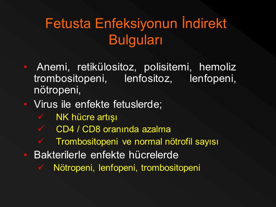 Fetusta Enfeksiyonun İndirekt Bulguları