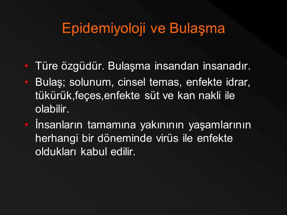 Epidemiyoloji ve Bulaşma