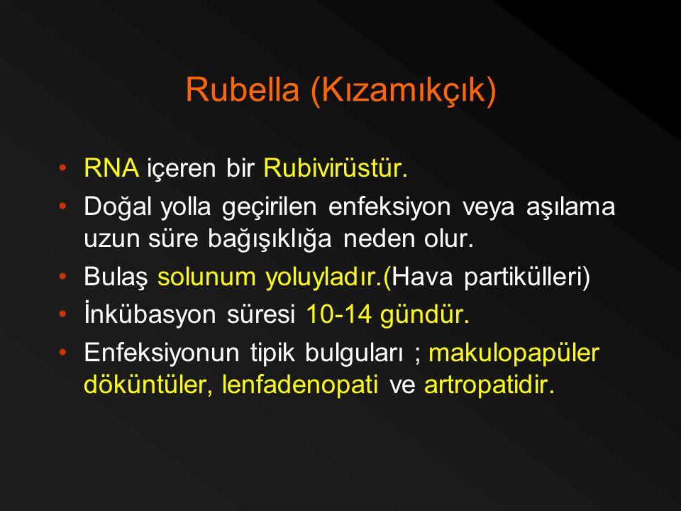 Rubella (Kızamıkçık) RNA içeren bir Rubivirüstür.