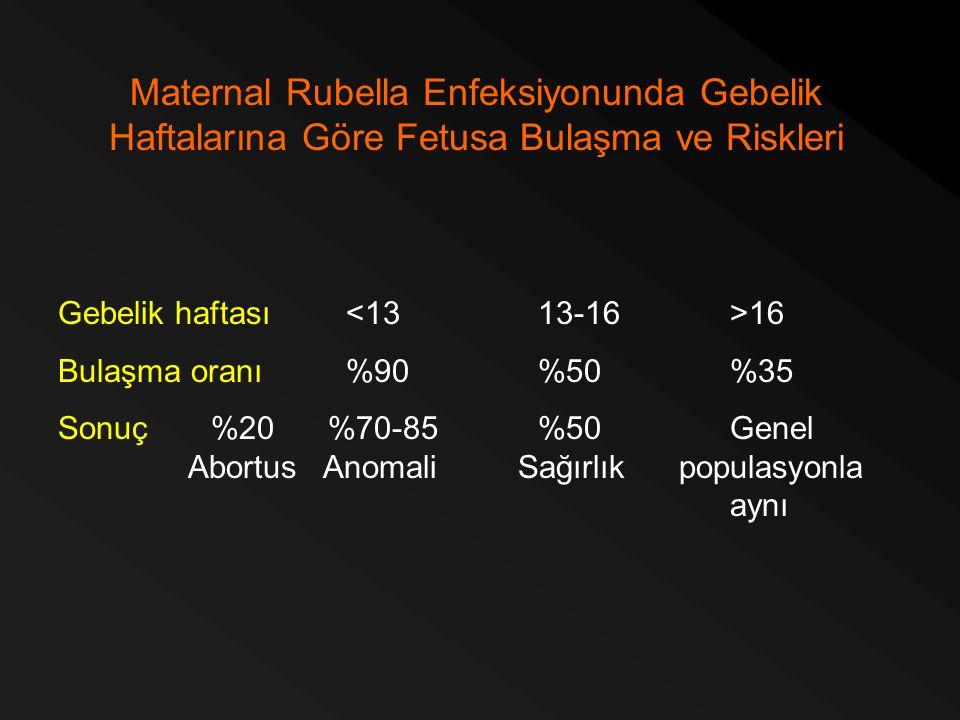 Maternal Rubella Enfeksiyonunda Gebelik Haftalarına Göre Fetusa Bulaşma ve Riskleri