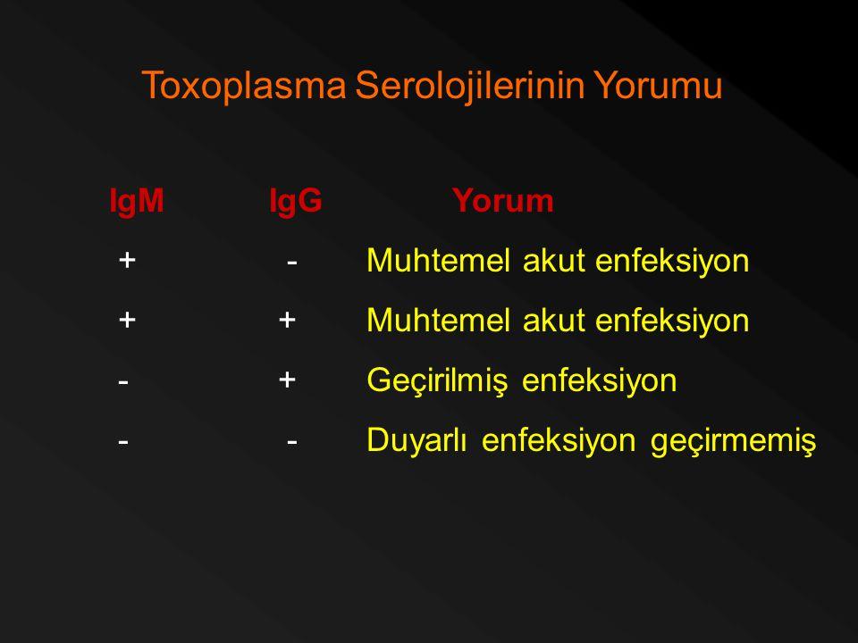 Toxoplasma Serolojilerinin Yorumu