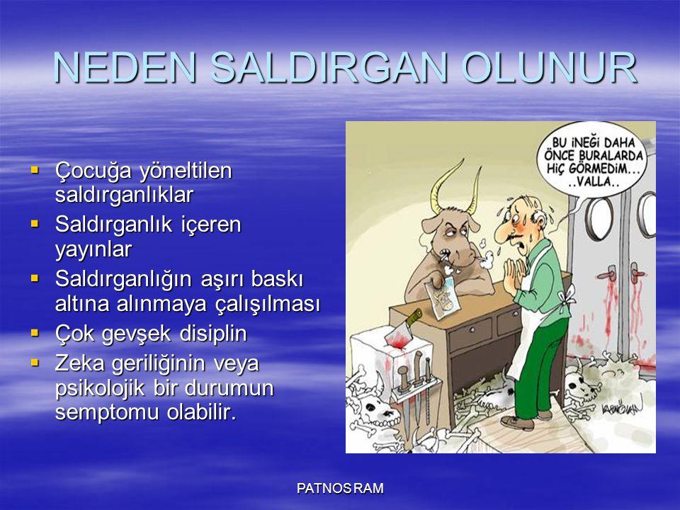 NEDEN SALDIRGAN OLUNUR