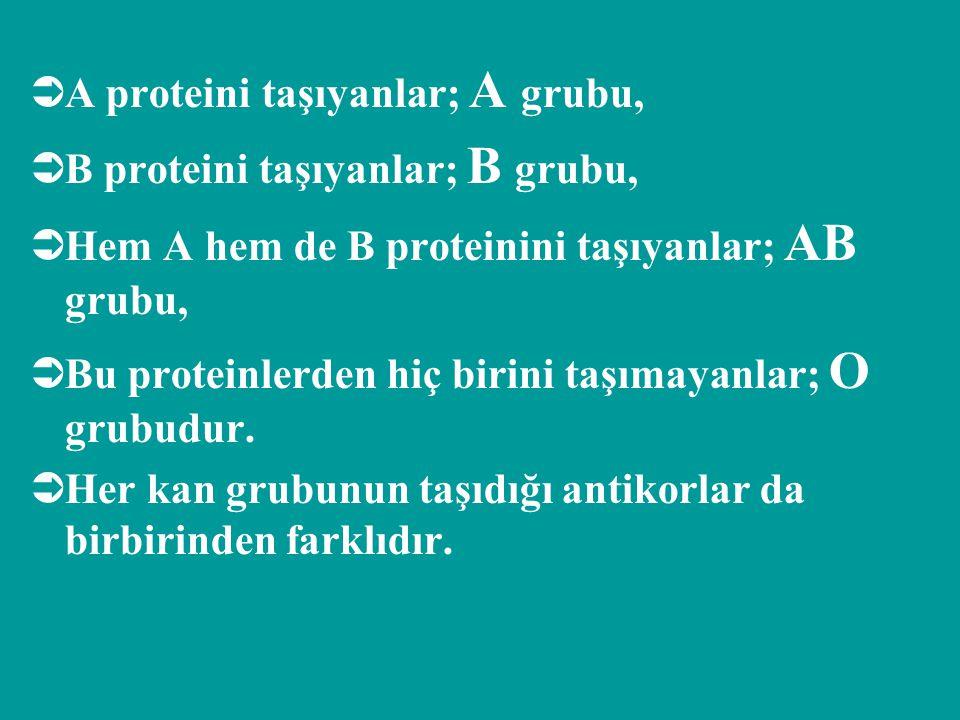 A proteini taşıyanlar; A grubu,