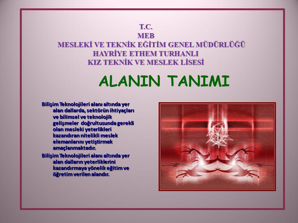 ALANIN TANIMI T.C. MEB MESLEKİ VE TEKNİK EĞİTİM GENEL MÜDÜRLÜĞÜ