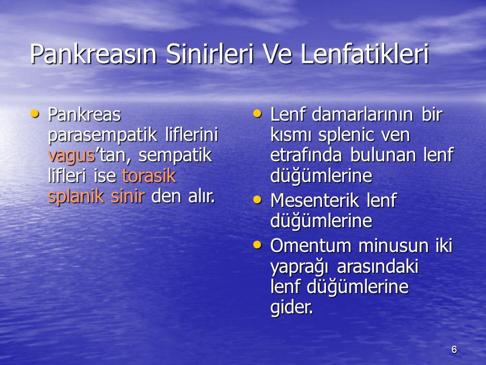 Pankreasın Sinirleri Ve Lenfatikleri