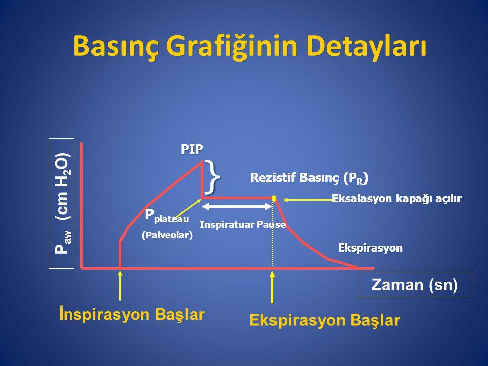 Basınç Grafiğinin Detayları